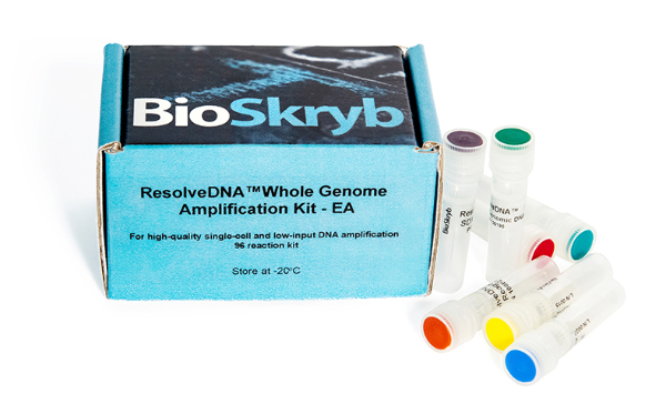 ResolveDNA™ Whole Genome Amplification Kit provides high-quality single cell and low input DNA amplification